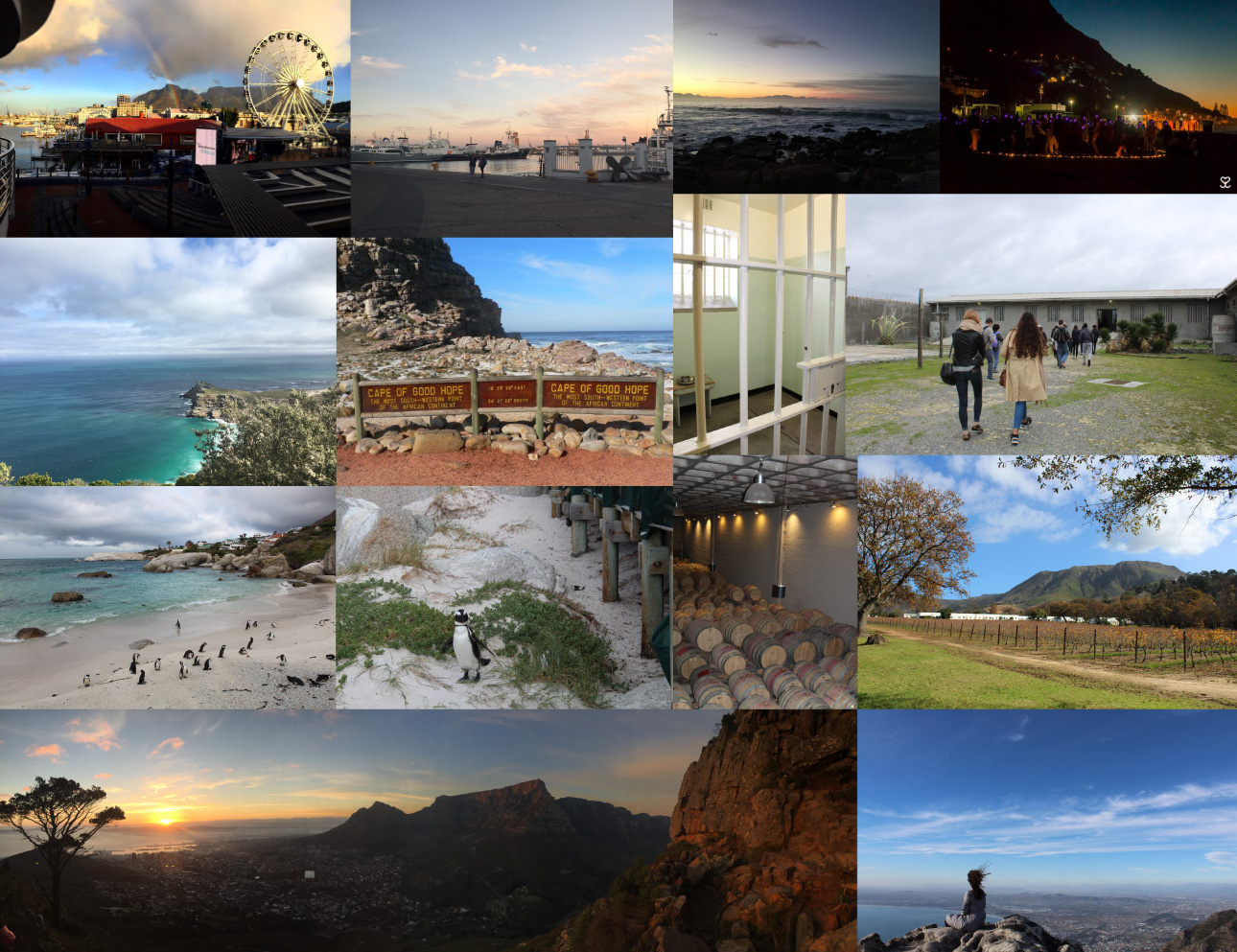 Interning in Cape Town: Travel Blog